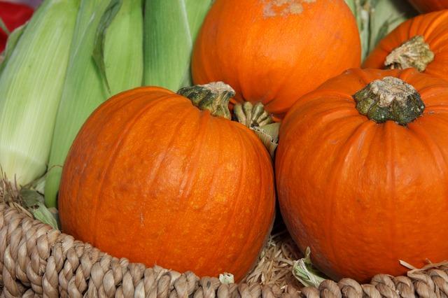 autumn-2855_640